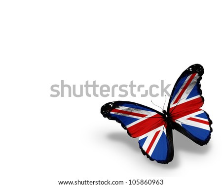 English flag butterfly, isolated on white background - stock photo