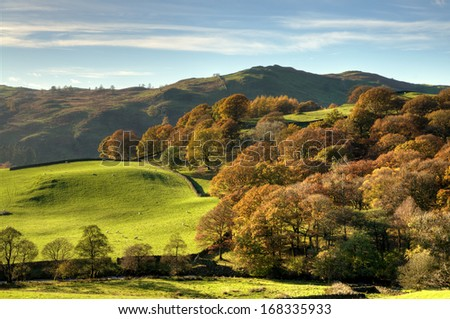 English rural scene with autumn colours - stock photo