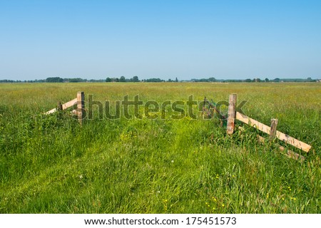 Entrance to a Blooming pasture in May, The Netherlands - stock photo