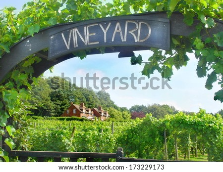 entrance to a vineyard on a sunny day - stock photo