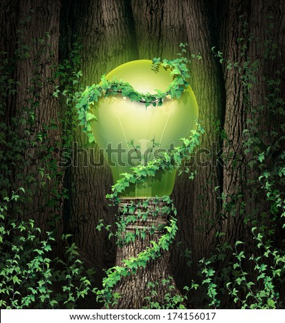 Environment conservation concept with a tree forest and a trunk shaped as an illuminated green lightbulb as a climate metaphor and symbol for renewable energy and global environmental inspiration. - stock photo