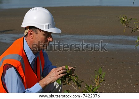 Environmental engineer examining a beach area wearing a white safety helmet and orange high visibility vest on the mud flats - stock photo