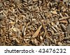 Environmental Organic Wood Chip Background - stock photo