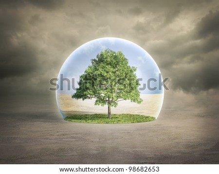 Environmental protection concept - tree in a bubble - stock photo