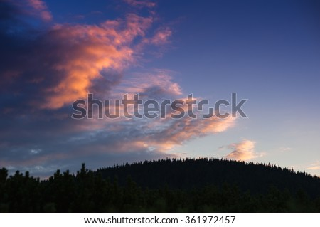 Epic sunset in a forest sky background - stock photo