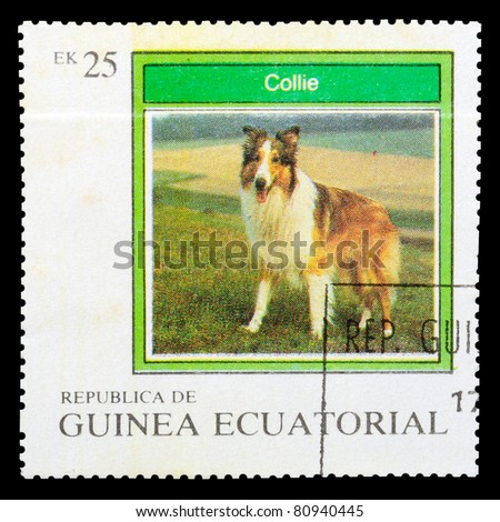 EQUATORIAL GUINEA - CIRCA 1977: A stamp printed by EQUATORIAL GUINEA shows a dog Collie, series, circa 1977 - stock photo