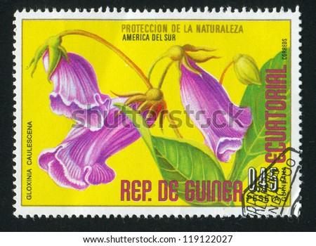 EQUATORIAL GUINEA - CIRCA 1973: stamp printed by Equatorial Guinea, shows Gloxinia, circa 1973 - stock photo