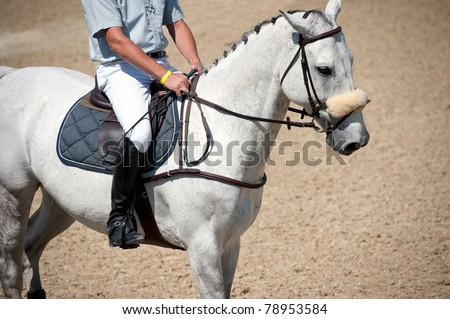 Equestrian horse with rider - stock photo