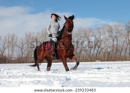 Equestrian woman with her horse in a snow landscape - stock photo