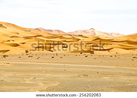 Erg Chebbi desert in Morocco Africa - stock photo