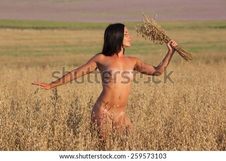 Erotic photo, beautiful girl posing on the field at sunset light - stock photo