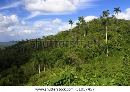 Escambray mountains in Cuba Island - stock photo