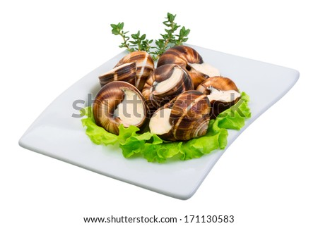 Escargot with cheese sauce - stock photo