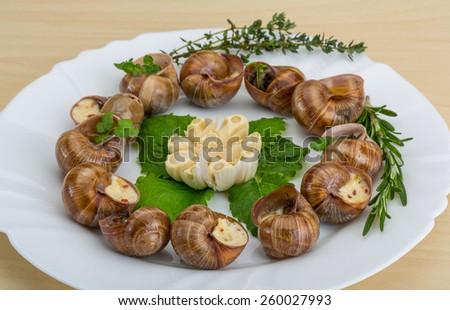 Escargot with rosemary, thyme, garlik and melissa - stock photo