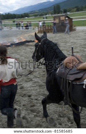 espectáculo de caballos - stock photo
