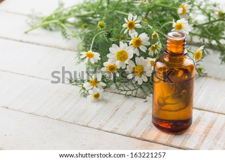 Essential aroma oil with chamomile on wooden background. Selective focus. - stock photo