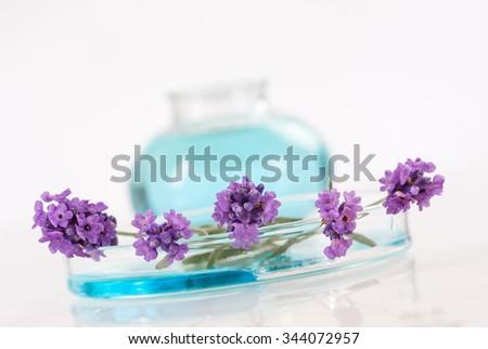 essential lavender oil,  - stock photo