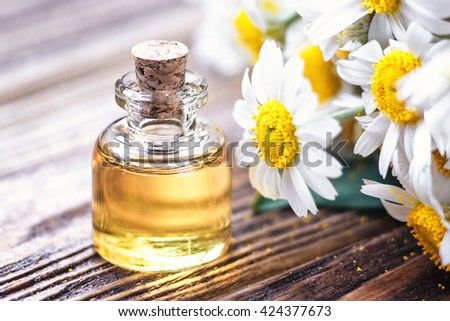 Essential oil in glass bottle with fresh chamomile flowers, beauty treatment. Spa concept. Selective focus. Fragrant oil of chamomile flowers, macro on wooden table horizontal.  - stock photo