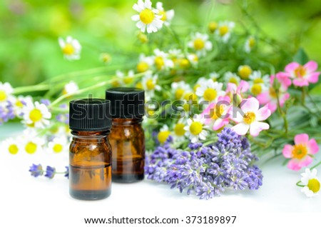 essential oils with herbal flowers in garden - stock photo