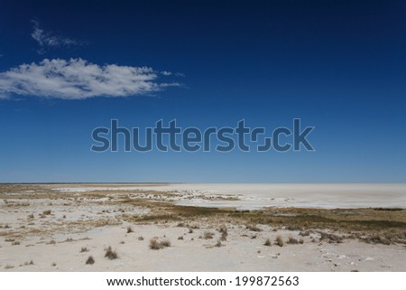 Etosha National Park in Nambia, Africa - stock photo