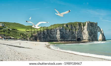 Etretat Aval cliff, rocks and natural arch withe seagulls. Normandy, France, Europe. - stock photo