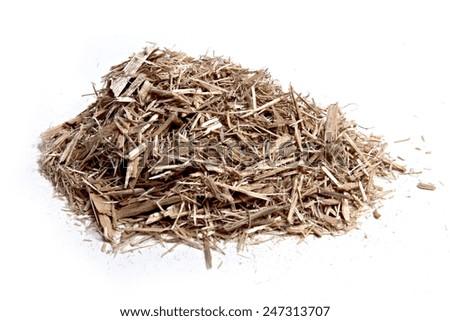 eucalyptus chips on white background - stock photo
