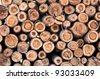 eucalyptus wood log stack - stock photo