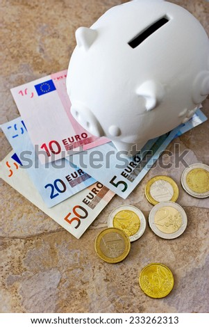 Euro banknotes and coins with piggy bank  - stock photo