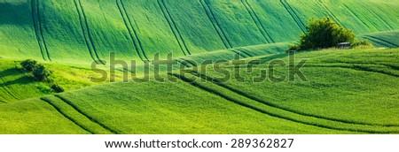 European rural wallpaper - panorama of Moravian rolling landscape, Moravia, Czech Republic - stock photo