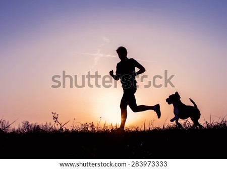 Evening jogging with beagle pet - stock photo