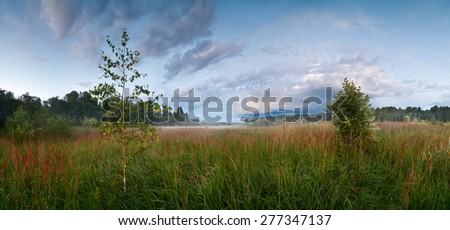 Evening landscape in a wild field with fog - stock photo