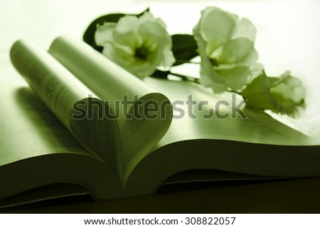 Evening light shining on heart symbol of a book with flower - meaningful wallpaper (Still light, dim light, selective focus) - stock photo