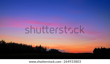 evening over the forest - stock photo