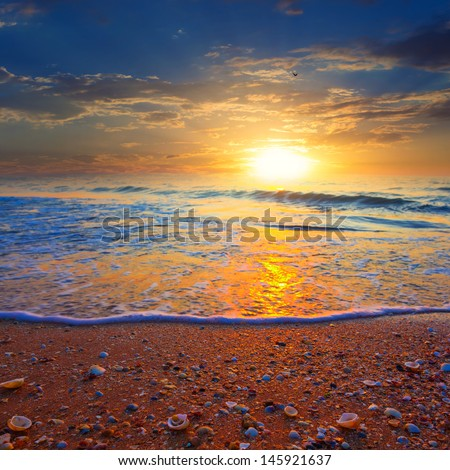 evening sea beach - stock photo