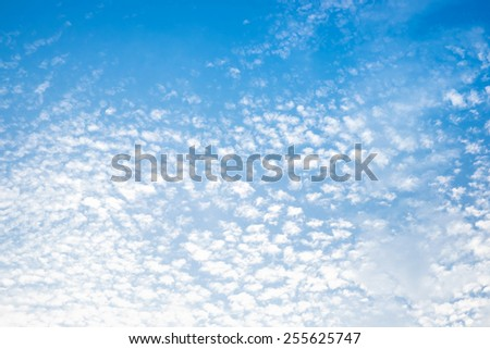 Evening sky and cloud ,nature background - stock photo