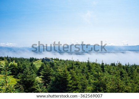 Evergreen trees with low clouds skimming top of forest, with mountain range in distant background under partly cloud sky, in Newfoundland, Canada. - stock photo