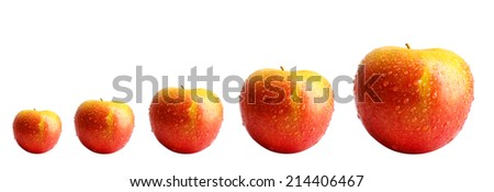 Evolution concept.Fresh red apples, isolated on white - stock photo