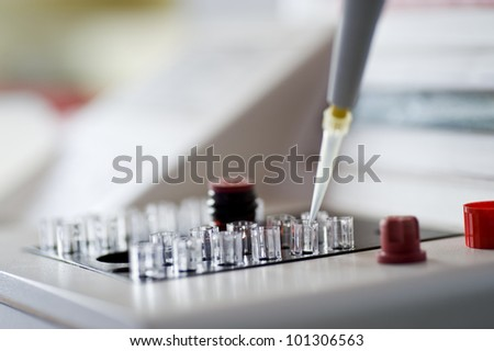 examination of the samples in the laboratory - stock photo