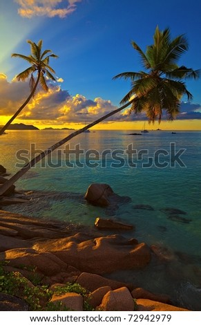 Excellent sunset view with a big stones and palmtrees, Seychelles, La Digue island - stock photo
