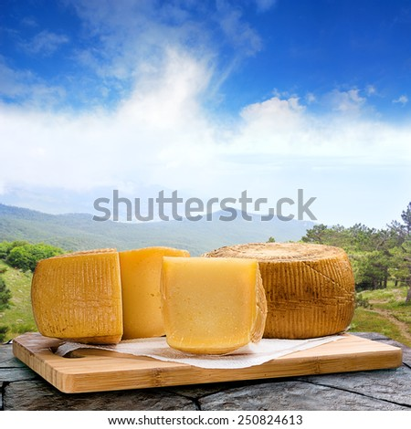 exclusive cheese is very close. Images collected from multiple images to increase the area of focus - stock photo
