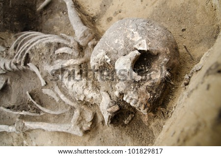 Exhumed skeleton of man with skull and chest visible - stock photo