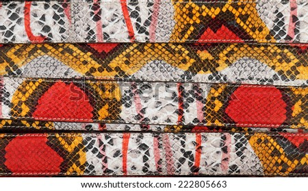 exotic colorful python skin belts as background - stock photo