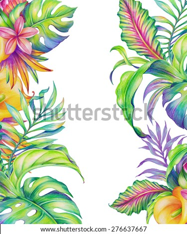 exotic foliage, tropical nature, abstract flowers and leaves, watercolor illustration isolated on white background - stock photo