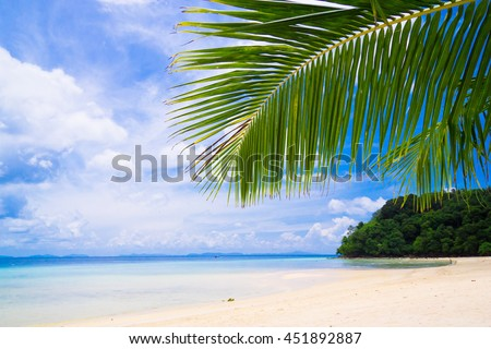 Exotic Paradise Under Trees  - stock photo