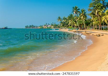 Exotic sandy beach full of palm trees, Sri Lanka - stock photo