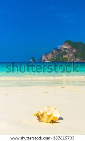 Exotic Shore Seascape Divine  - stock photo