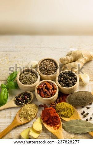 Exotically Spice Mix - stock photo