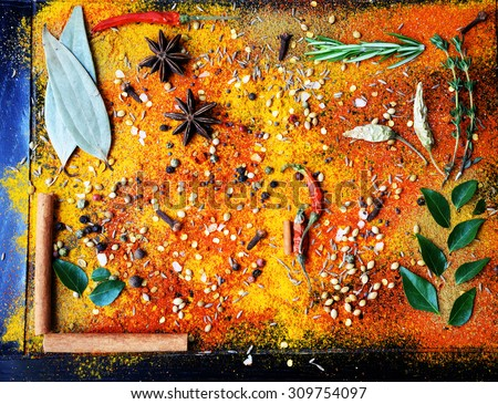 Exotically Spice Mix - spice, herbs, powder - stock photo