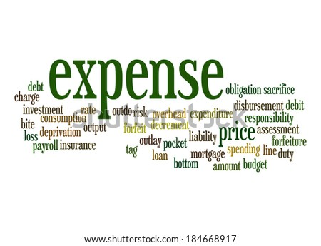 Expense word cloud - stock photo