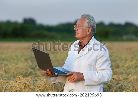 Experienced agronomist holding laptop in wheat field - stock photo